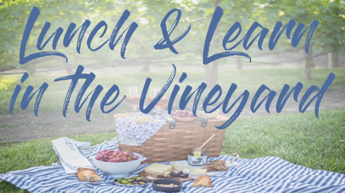 lunch and learn in the vineyard